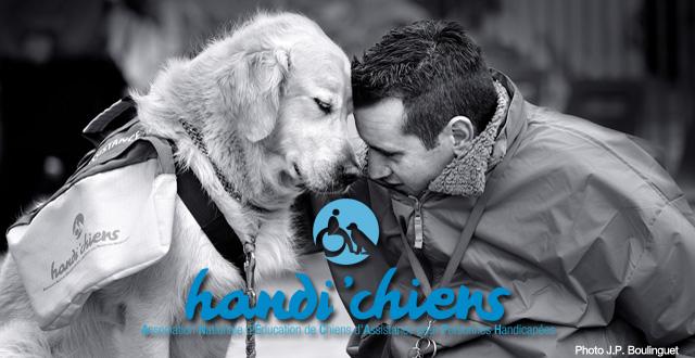Handi'chiens : l'autonomie retrouvée